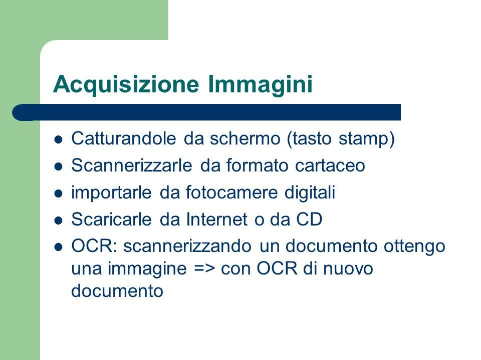Acquisizione Immagini Catturandole da schermo (tasto stamp) Scannerizzarle da formato cartaceo importarle da fotocamere digitali Scaricarle da Interne