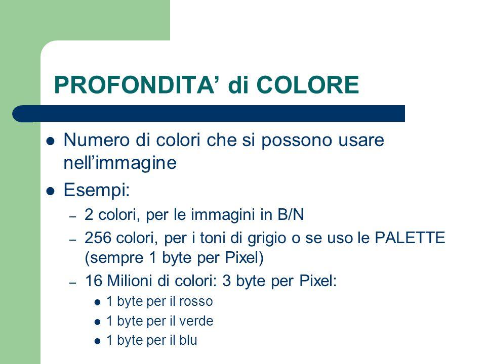 PROFONDITA' di COLORE Numero di colori che si possono usare nell'immagine Esempi: – 2 colori, per le immagini in B/N – 256 colori, per i toni di grigi