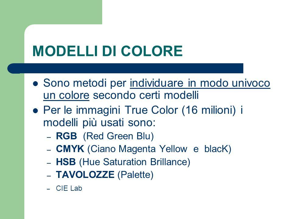 MODELLI DI COLORE Sono metodi per individuare in modo univoco un colore secondo certi modelli Per le immagini True Color (16 milioni) i modelli più us