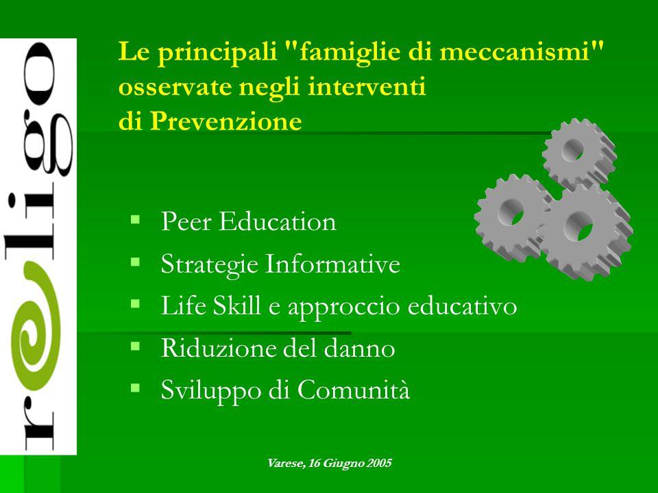 Le principali famiglie di meccanismi osservate negli interventi di Prevenzione   Peer Education   Strategie Informative   Life Skill e approccio educativo   Riduzione del danno   Sviluppo di Comunità Varese, 16 Giugno 2005