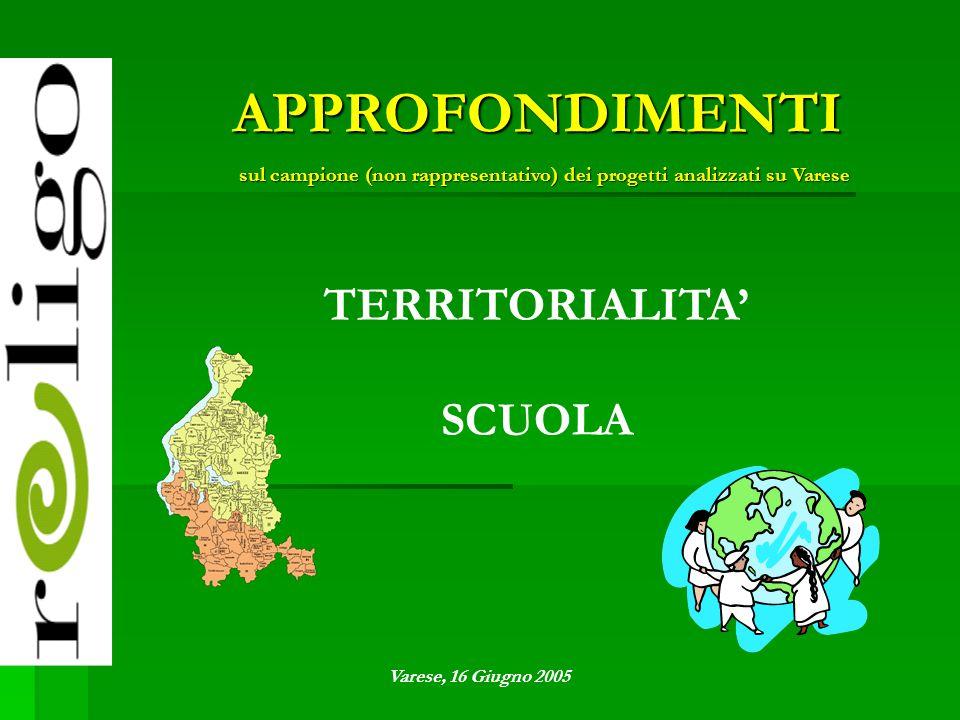 TERRITORIALITA' SCUOLA APPROFONDIMENTI sul campione (non rappresentativo) dei progetti analizzati su Varese Varese, 16 Giugno 2005