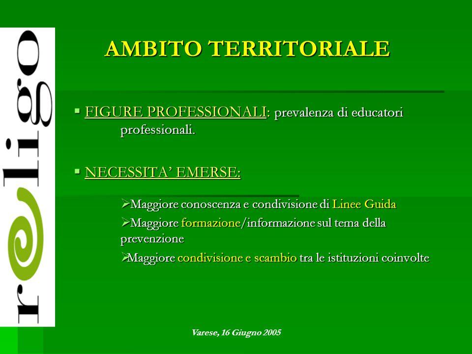 AMBITO TERRITORIALE  FIGURE PROFESSIONALI: prevalenza di educatori professionali.