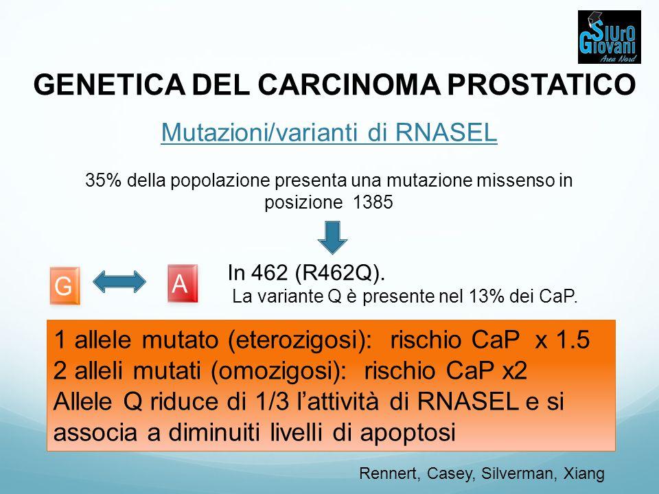 GENETICA DEL CARCINOMA PROSTATICO Mutazioni/varianti di RNASEL 35% della popolazione presenta una mutazione missenso in posizione 1385 1 allele mutato
