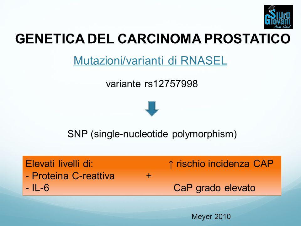 GENETICA DEL CARCINOMA PROSTATICO Mutazioni/varianti di RNASEL variante rs12757998 SNP (single-nucleotide polymorphism) Elevati livelli di: ↑ rischio