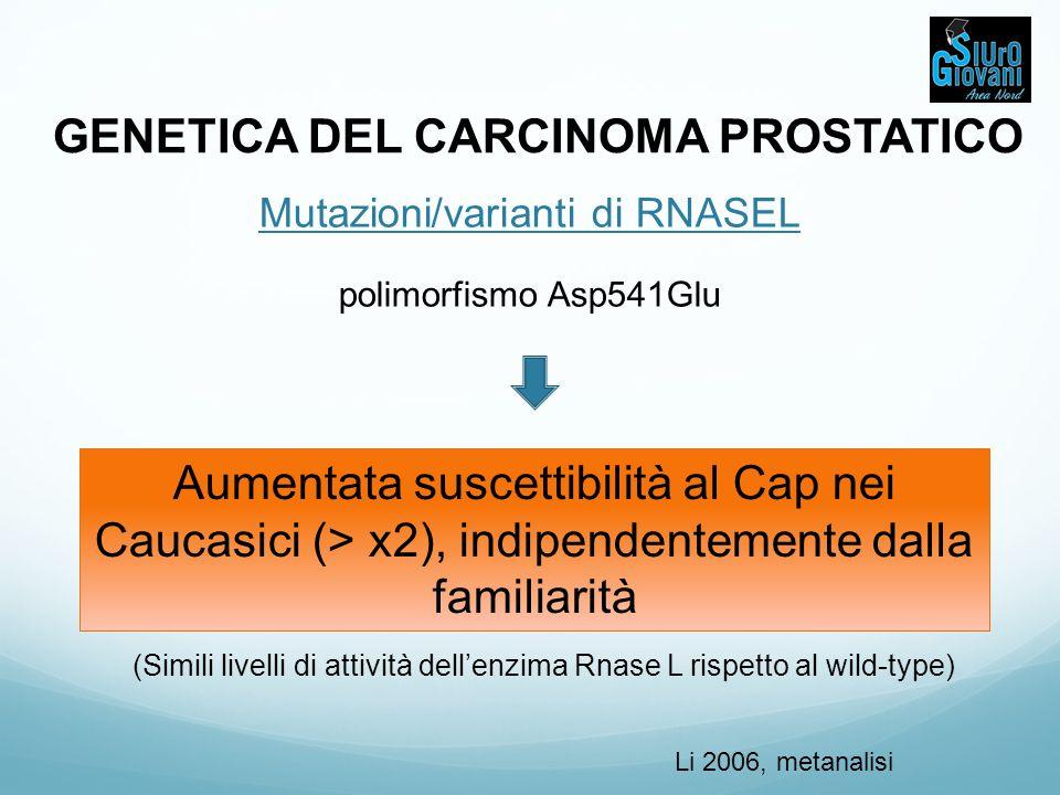 GENETICA DEL CARCINOMA PROSTATICO Mutazioni/varianti di RNASEL polimorfismo Asp541Glu Aumentata suscettibilità al Cap nei Caucasici (> x2), indipenden