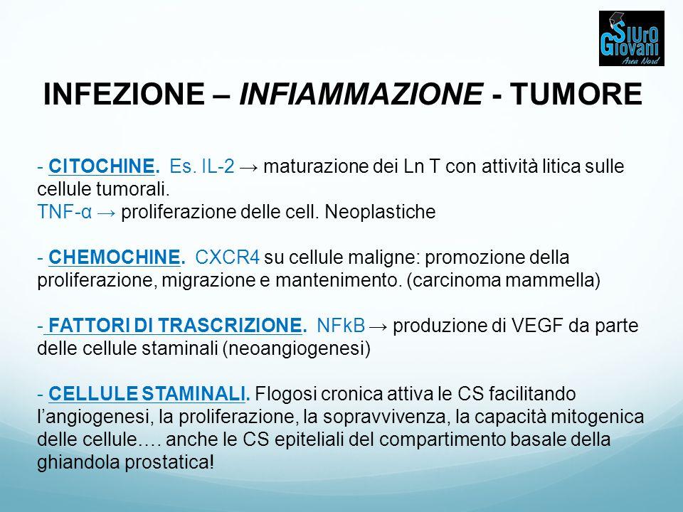INFIAMMAZIONE – TUMORE PROSTATICO PIA (proliferative inflammatory atrophy) + infiltrato infiammatorio come comune reperto in campioni di tessuto prostatico sia benigni che maligno.
