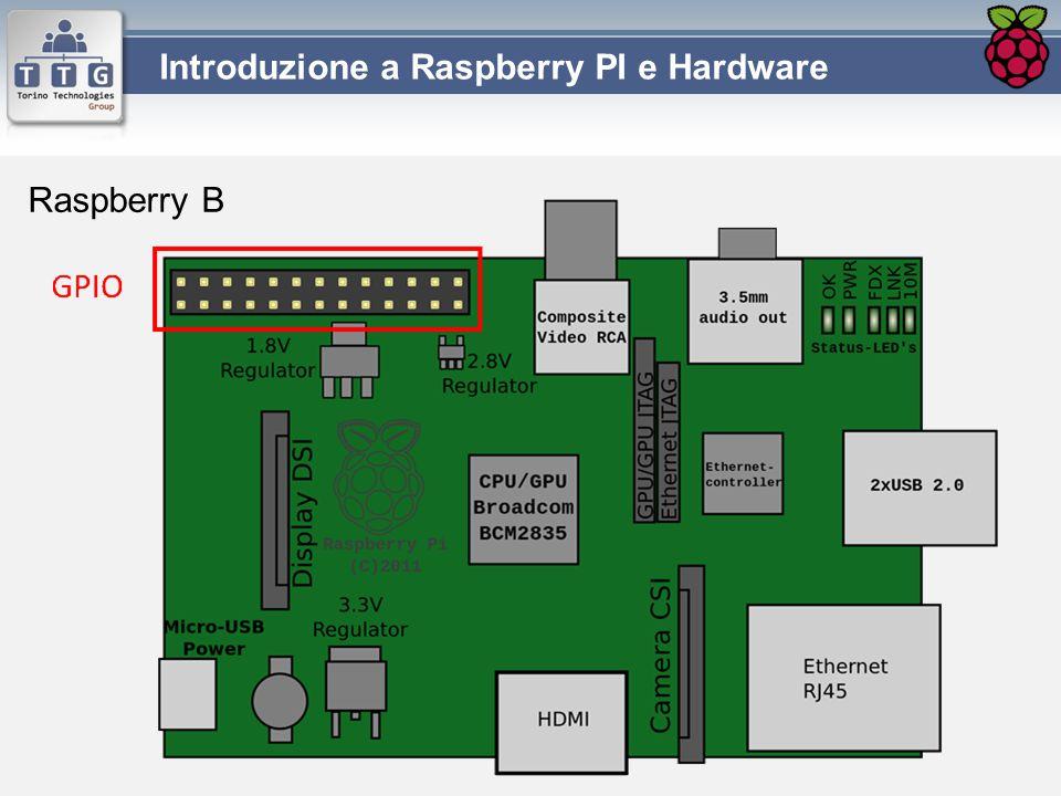 Raspberry B
