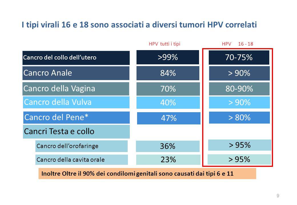 I tipi virali 16 e 18 sono associati a diversi tumori HPV correlati HPV tutti i tipi HPV 16 - 18 I TIPI VIRALI 16 E I TIPI VIRALI 16 E 18 SONO ASSOCIA