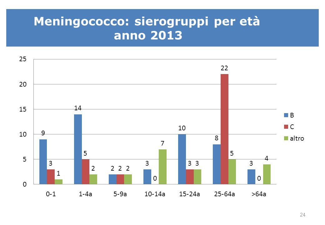 Meningococco: sierogruppi per età anno 2013 24