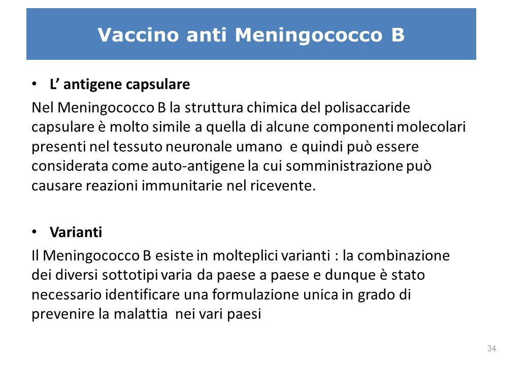 Vaccino anti Meningococco B L' antigene capsulare Nel Meningococco B la struttura chimica del polisaccaride capsulare è molto simile a quella di alcun
