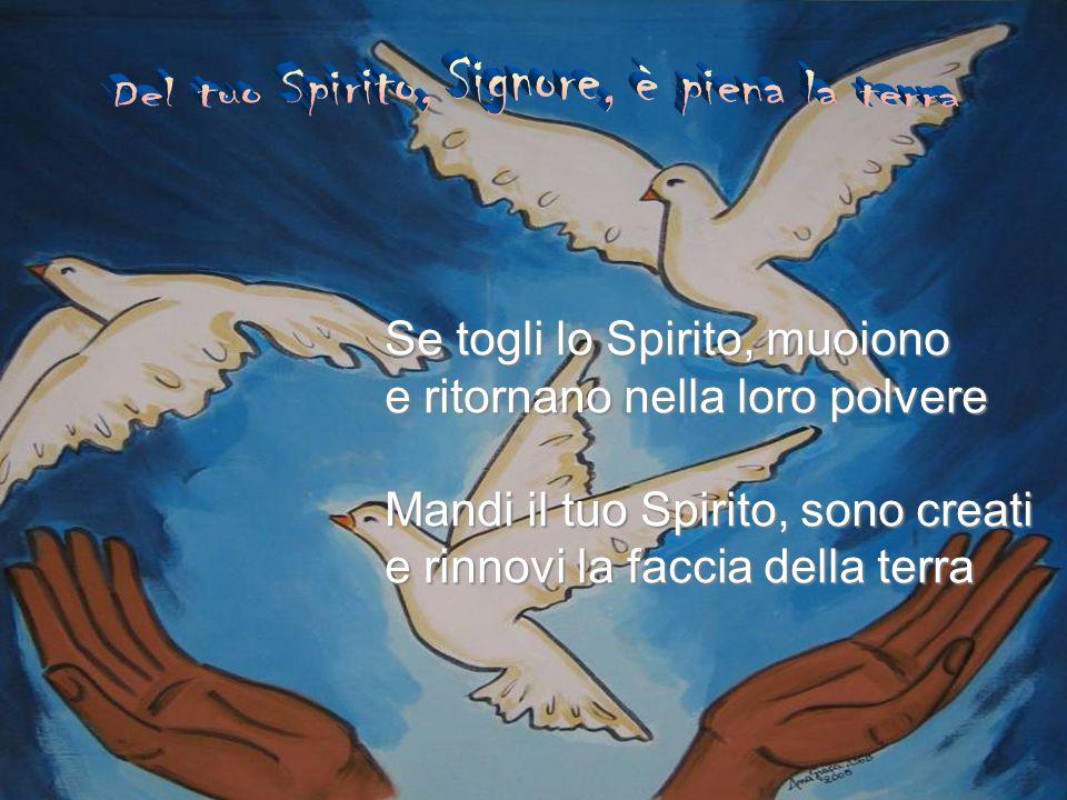 Se togli lo Spirito, muoiono e ritornano nella loro polvere Mandi il tuo Spirito, sono creati e rinnovi la faccia della terra