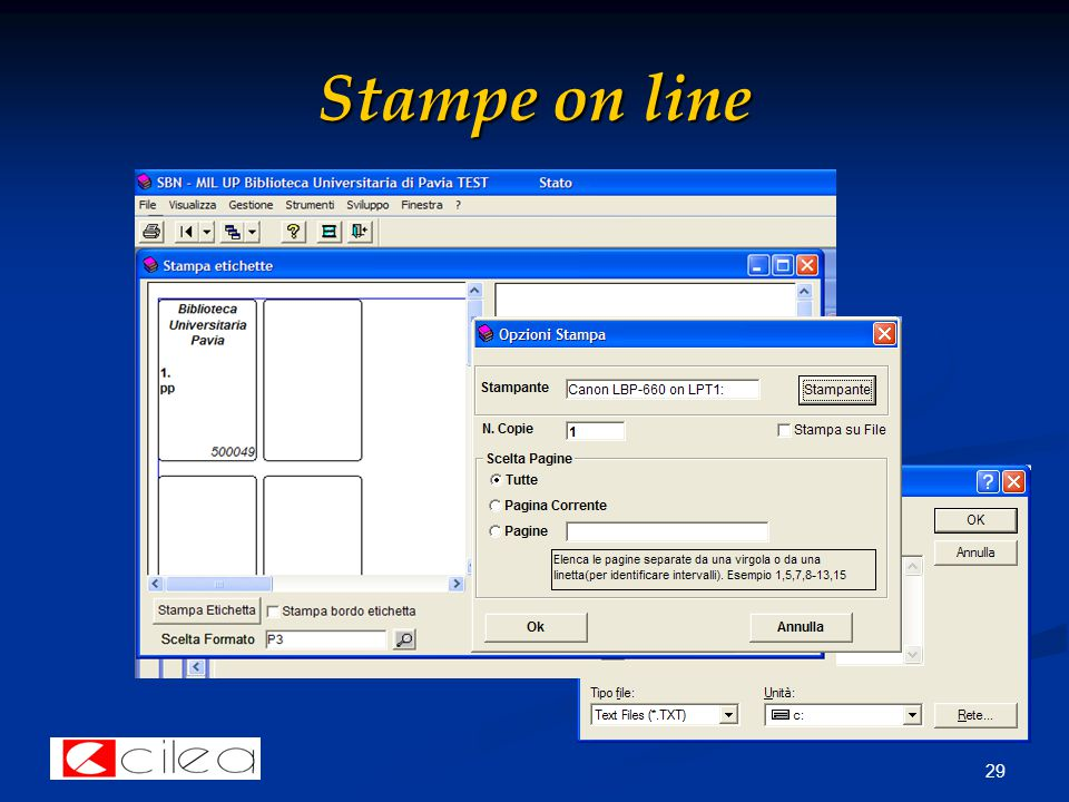 29 Stampe on line
