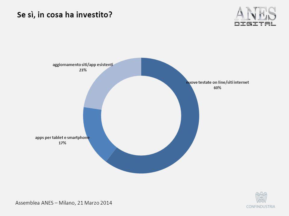 Assemblea ANES – Milano, 21 Marzo 2014 Se sì, in cosa ha investito?