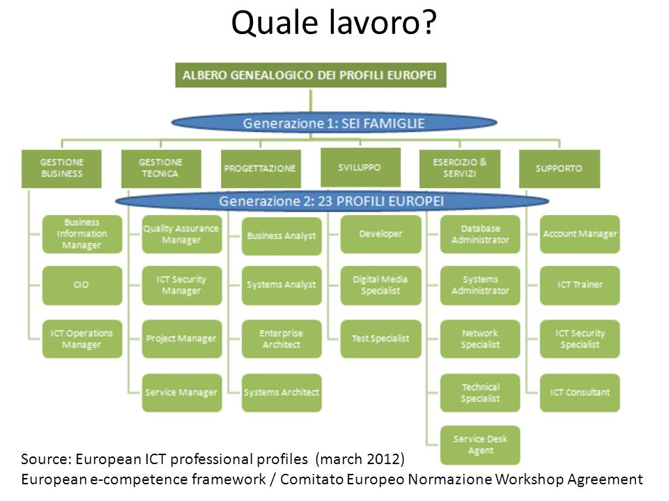 Quale lavoro? Source: European ICT professional profiles (march 2012) European e-competence framework / Comitato Europeo Normazione Workshop Agreement