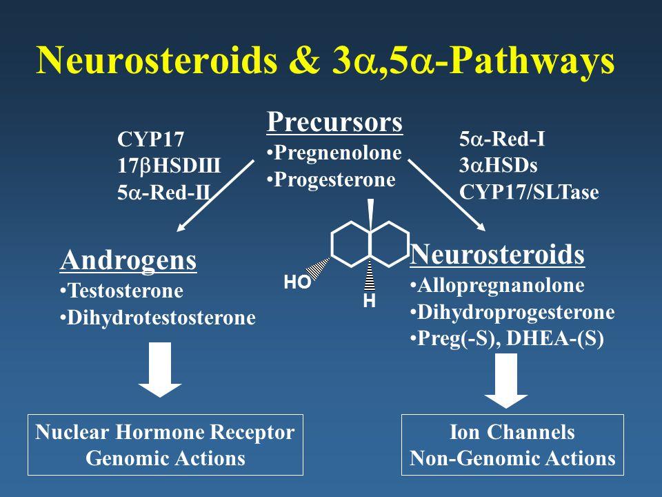 Neurosteroids & 3 ,5  -Pathways Precursors Pregnenolone Progesterone Androgens Testosterone Dihydrotestosterone Neurosteroids Allopregnanolone Dihyd