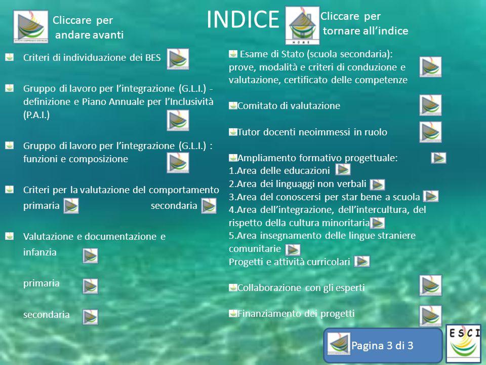 INDICE Criteri di individuazione dei BES Gruppo di lavoro per l'integrazione (G.L.I.) - definizione e Piano Annuale per l'Inclusività (P.A.I.) Gruppo