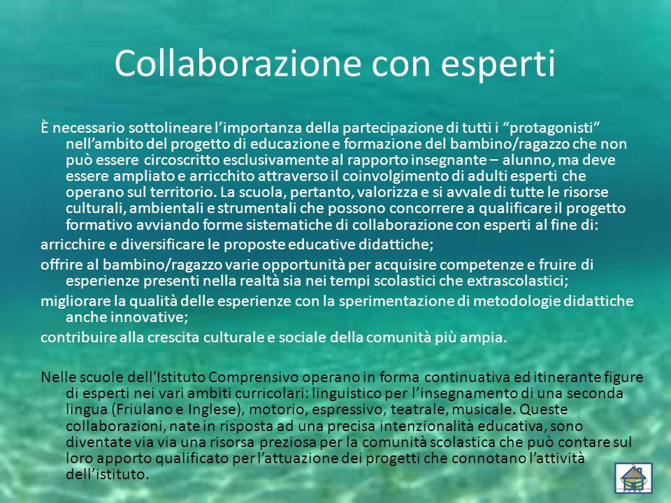 """Collaborazione con esperti È necessario sottolineare l'importanza della partecipazione di tutti i """"protagonisti"""" nell'ambito del progetto di educazion"""