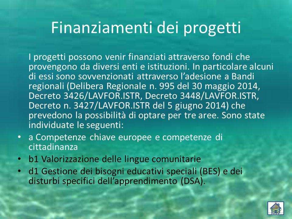 Finanziamenti dei progetti I progetti possono venir finanziati attraverso fondi che provengono da diversi enti e istituzioni.