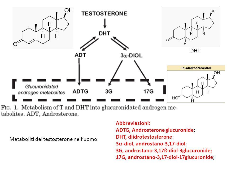 Abbreviazioni: ADTG, Androsterone glucuronide; DHT, diidrotestosterone; 3  -diol, androstano-3,17-diol; 3G, androstano-3,17ß-diol-3glucuronide; 17G,