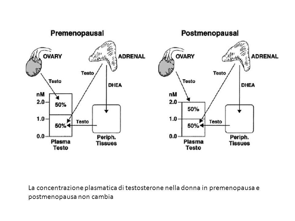 La concentrazione plasmatica di testosterone nella donna in premenopausa e postmenopausa non cambia