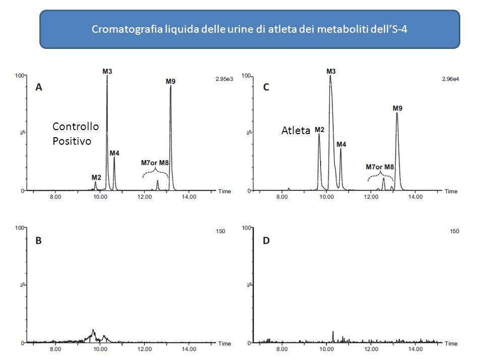Cromatografia liquida delle urine di atleta dei metaboliti dell'S-4 Controllo Positivo Atleta