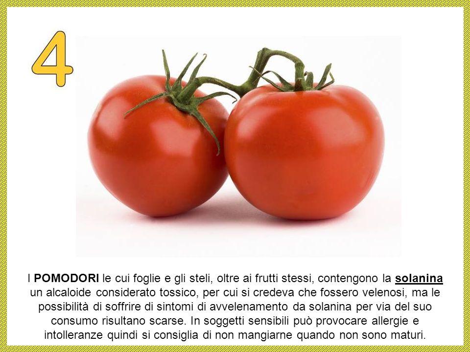 I FUNGHI rappresentano una delle cause più comuni di avvelenamento e di intossicazione alimentare. La famiglia dei funghi comprende esemplari velenosi