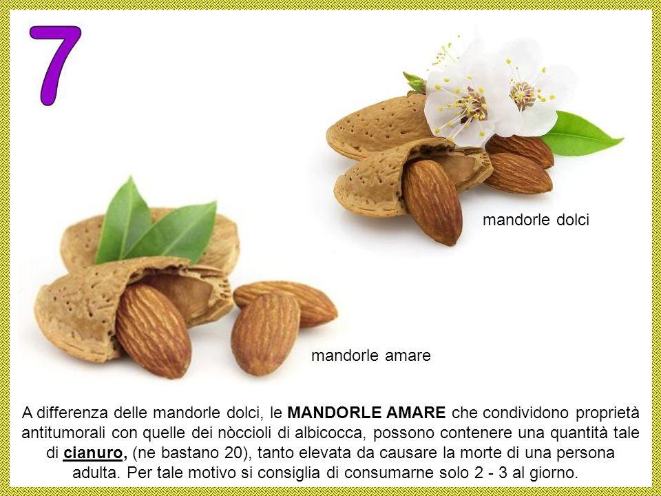 La MANIOCA nota anche come cassava o yucca, come le mandorla amara, contiene cianuro quindi l'amido che si ottiene (farina di tapioca) deve essere con
