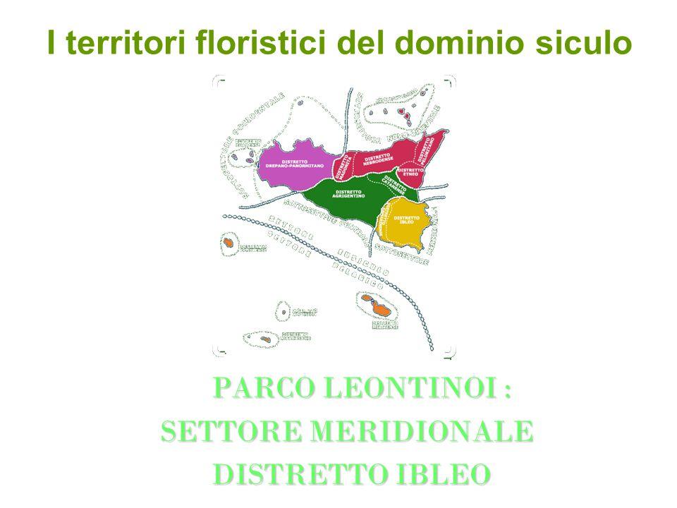 I territori floristici del dominio siculo PARCO LEONTINOI : PARCO LEONTINOI : SETTORE MERIDIONALE SETTORE MERIDIONALE DISTRETTO IBLEO DISTRETTO IBLEO