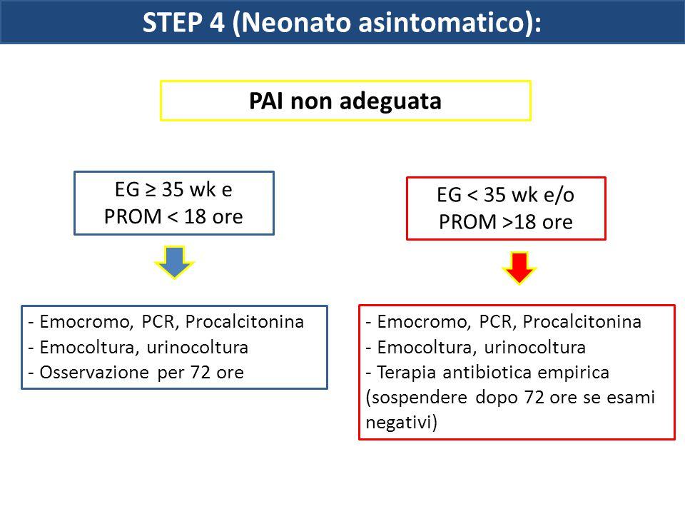 STEP 4 (Neonato asintomatico): EG ≥ 35 wk e PROM < 18 ore EG < 35 wk e/o PROM >18 ore PAI non adeguata - Emocromo, PCR, Procalcitonina - Emocoltura, u