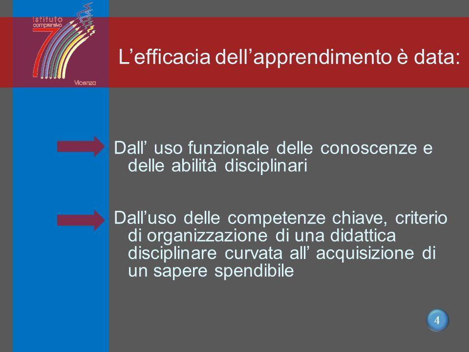 4 L'efficacia dell'apprendimento è data: Dall' uso funzionale delle conoscenze e delle abilità disciplinari Dall'uso delle competenze chiave, criterio di organizzazione di una didattica disciplinare curvata all' acquisizione di un sapere spendibile
