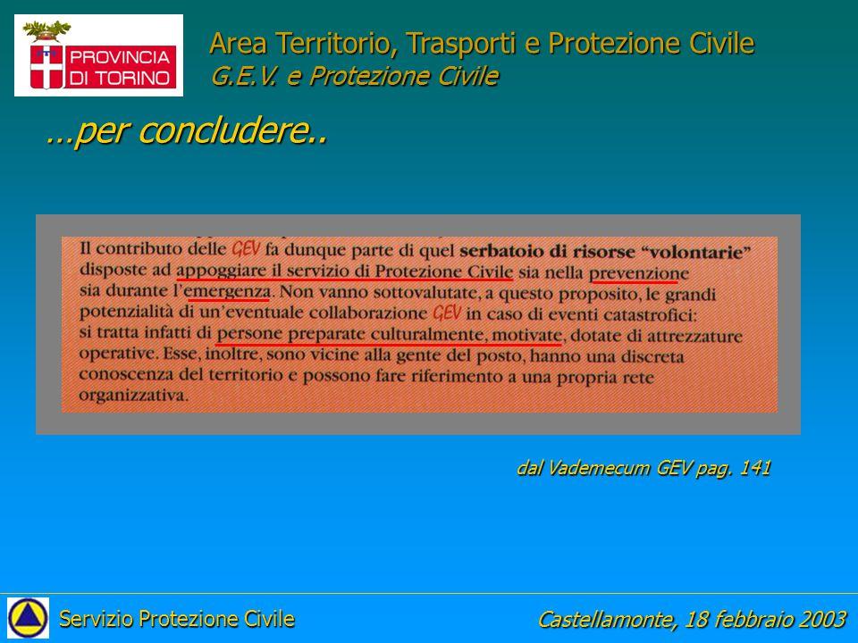 Corso Castellamonte, 18 febbraio 2003 Servizio Protezione Civile Area Territorio, Trasporti e Protezione Civile G.E.V.