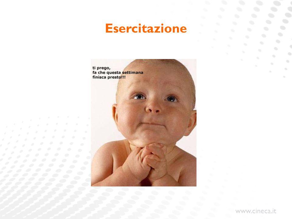 www.cineca.it Esercitazione
