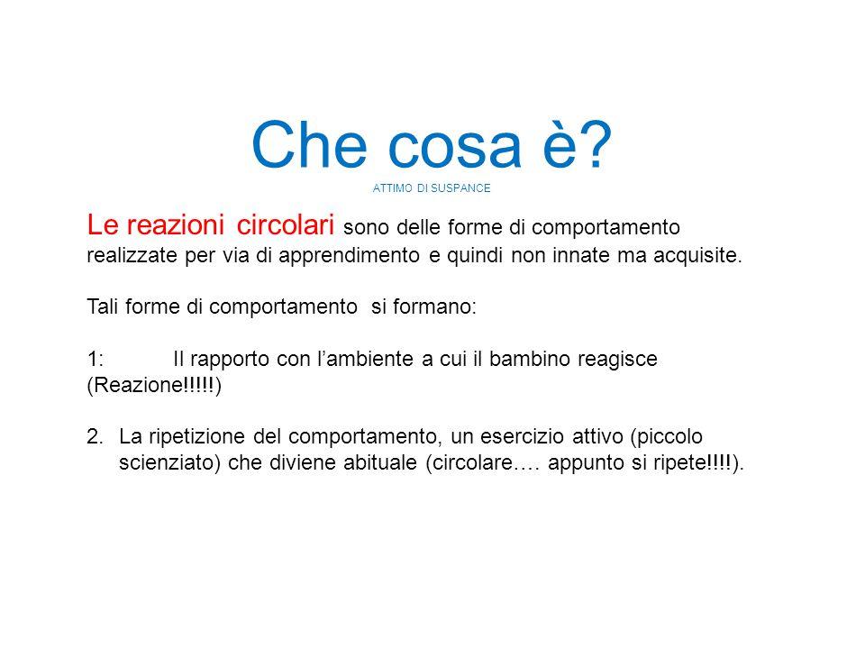 Le reazioni circolari sono delle forme di comportamento realizzate per via di apprendimento e quindi non innate ma acquisite. Tali forme di comportame