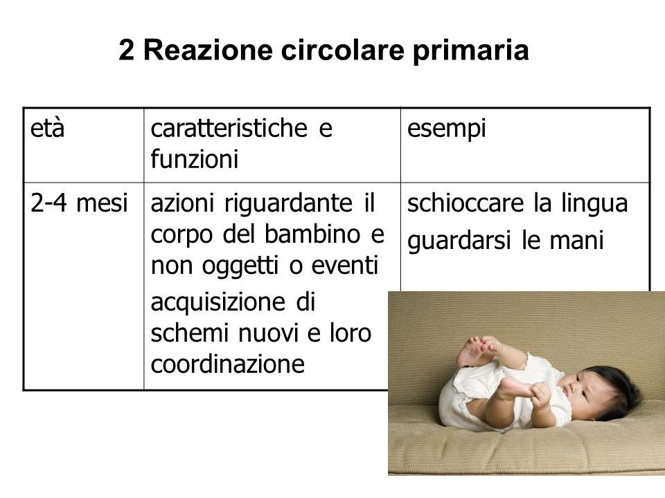 11 2 Reazione circolare primaria etàcaratteristiche e funzioni esempi 2-4 mesiazioni riguardante il corpo del bambino e non oggetti o eventi acquisizi