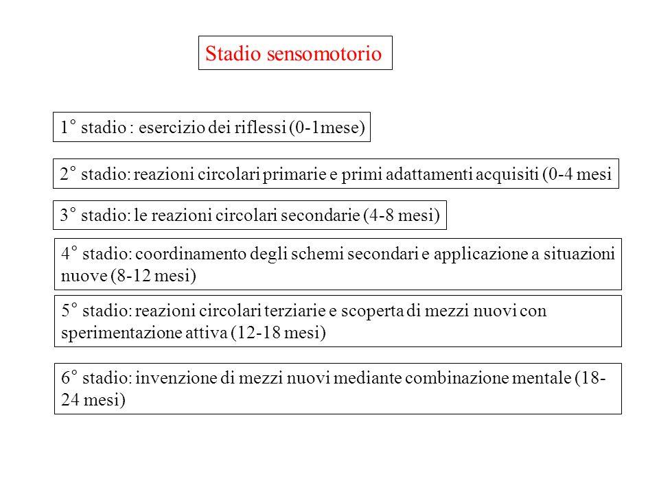 Stadio sensomotorio 1° stadio : esercizio dei riflessi (0-1mese) 2° stadio: reazioni circolari primarie e primi adattamenti acquisiti (0-4 mesi 3° sta