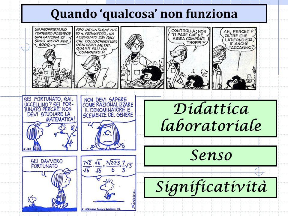 Quando 'qualcosa' non funziona Senso Significatività Didattica laboratoriale
