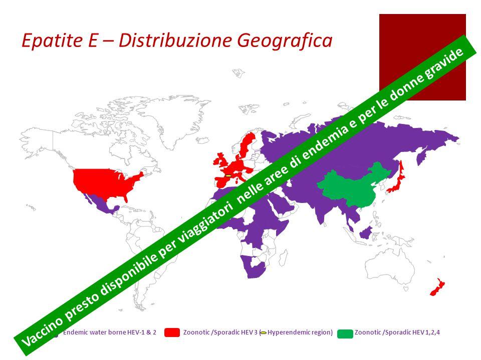 Epatite E – Distribuzione Geografica Vaccino presto disponibile per viaggiatori nelle aree di endemia e per le donne gravide