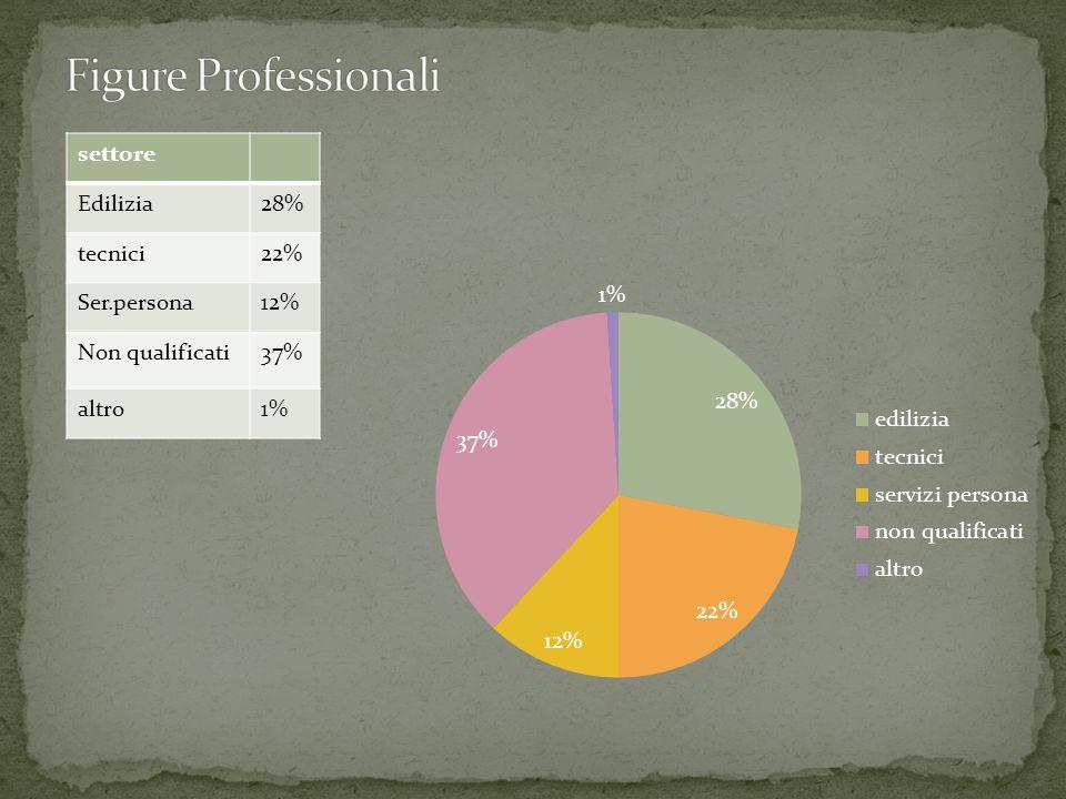 settore Edilizia28% tecnici22% Ser.persona12% Non qualificati37% altro1%