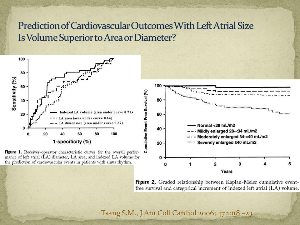 Tsang S.M., J Am Coll Cardiol 2006; 47:1018 –23