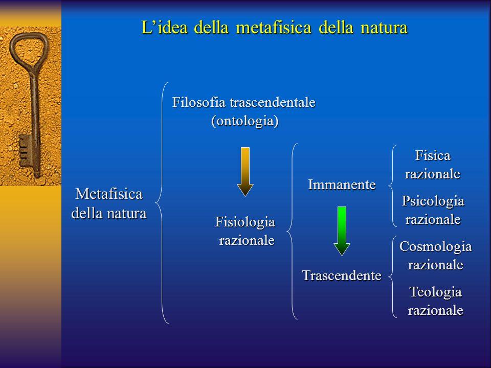 Metafisica della natura Filosofia trascendentale (ontologia) Fisiologia razionale razionale Immanente Trascendente Fisicarazionale Psicologiarazionale
