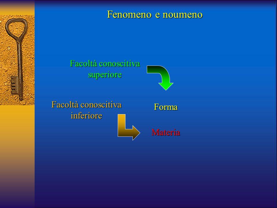 Forma Facoltà conoscitiva superiore Materia Fenomeno e noumeno Facoltà conoscitiva inferiore