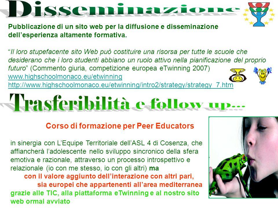 Pubblicazione di un sito web per la diffusione e disseminazione dell'esperienza altamente formativa.