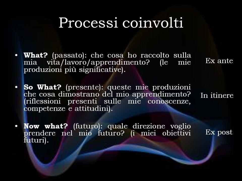 Processi coinvolti What. (passato): che cosa ho raccolto sulla mia vita/lavoro/apprendimento.