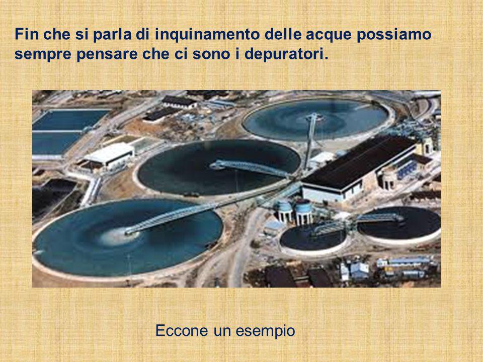 Fin che si parla di inquinamento delle acque possiamo sempre pensare che ci sono i depuratori. Eccone un esempio