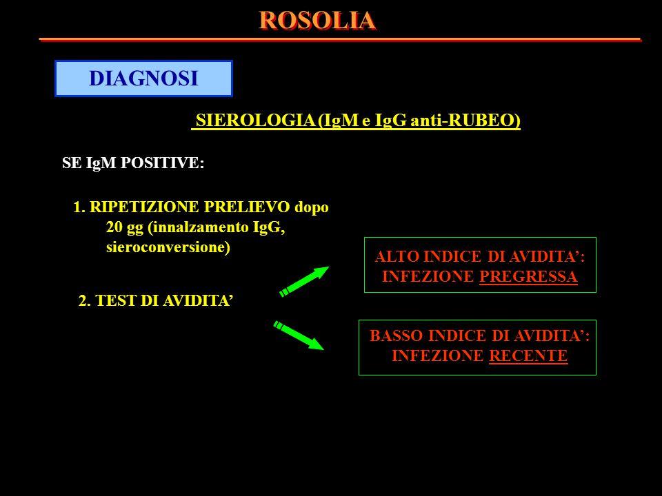 SIEROLOGIA (IgM e IgG anti-RUBEO) SE IgM POSITIVE: 1. RIPETIZIONE PRELIEVO dopo 20 gg (innalzamento IgG, sieroconversione) 2. TEST DI AVIDITA' ROSOLIA