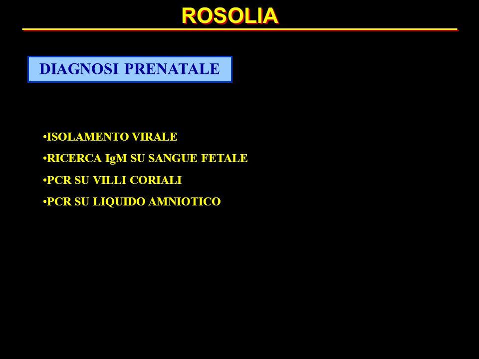 ISOLAMENTO VIRALE RICERCA IgM SU SANGUE FETALE PCR SU VILLI CORIALI PCR SU LIQUIDO AMNIOTICO ROSOLIA DIAGNOSI PRENATALE
