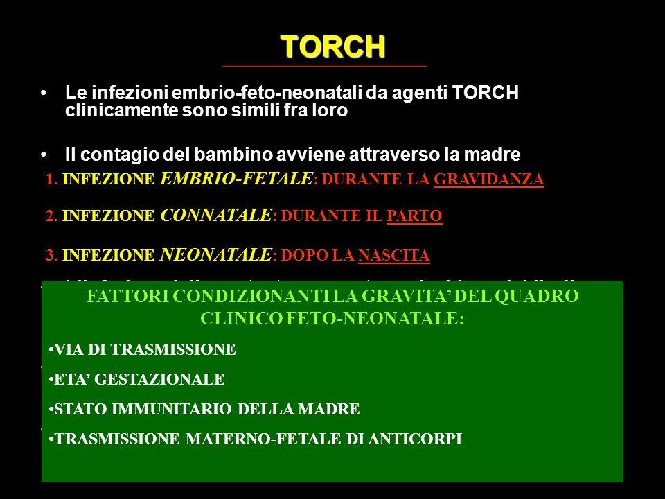 TORCH Le infezioni embrio-feto-neonatali da agenti TORCH clinicamente sono simili fra loro Il contagio del bambino avviene attraverso la madre L'infez