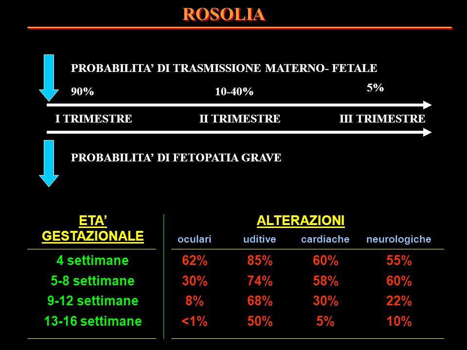I TRIMESTREII TRIMESTREIII TRIMESTRE PROBABILITA' DI TRASMISSIONE MATERNO- FETALE PROBABILITA' DI FETOPATIA GRAVE 90%10-40% 5% ROSOLIA ETA' GESTAZIONA