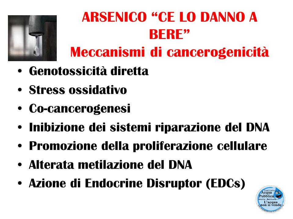 """ARSENICO """"CE LO DANNO A BERE"""" Meccanismi di cancerogenicità Genotossicità diretta Stress ossidativo Co-cancerogenesi Inibizione dei sistemi riparazion"""