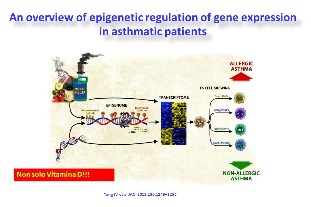 Latitudine e sintesi cutanea di vitamina D Arabi A et al Nature Reviews Endocrinology 2010;6: 550-561